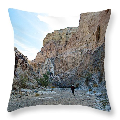 Hiker In Big Painted Canyon Trail In Mecca Hills Throw Pillow featuring the photograph Hiker In Big Painted Canyons Trail In Mecca Hills-ca by Ruth Hager
