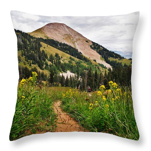 3scape Throw Pillow featuring the photograph Hiking In La Sal by Adam Romanowicz