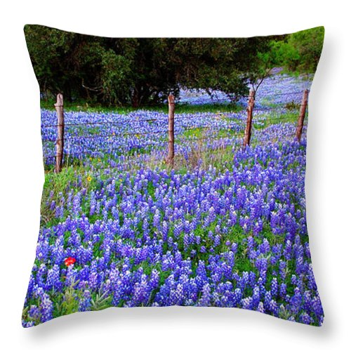 Spring Throw Pillow featuring the photograph Hill Country Heaven - Texas Bluebonnets Wildflowers Landscape Fence Flowers by Jon Holiday