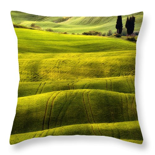 Cypress Throw Pillow featuring the photograph Hills Of Toscany by Jaroslaw Blaminsky