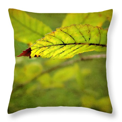 Leaf Throw Pillow featuring the photograph Hint Of Autumn by Judi Bagwell