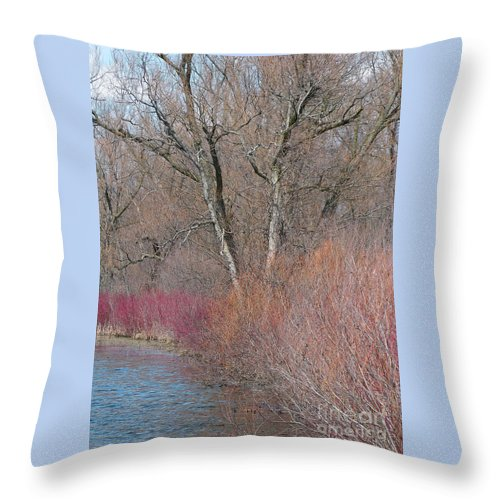 Spring Throw Pillow featuring the photograph Hint Of Spring by Ann Horn