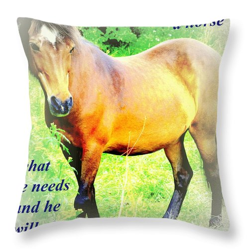 Wrestle Throw Pillow featuring the photograph Care About A Horse And He Will Give You His Heart In Return by Hilde Widerberg