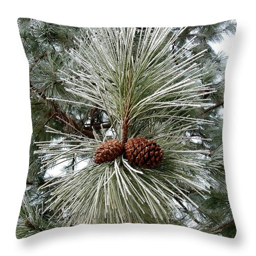 Hoarfrost 1 Throw Pillow featuring the photograph Hoarfrost 1 by Will Borden