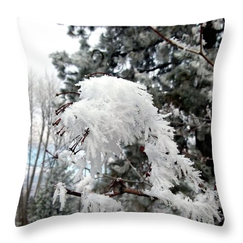 Hoarfrost 19 Throw Pillow featuring the photograph Hoarfrost 19 by Will Borden