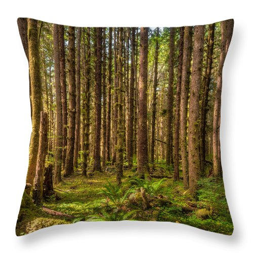 America Throw Pillow featuring the photograph Hoh Rain Forest by Rich Leighton