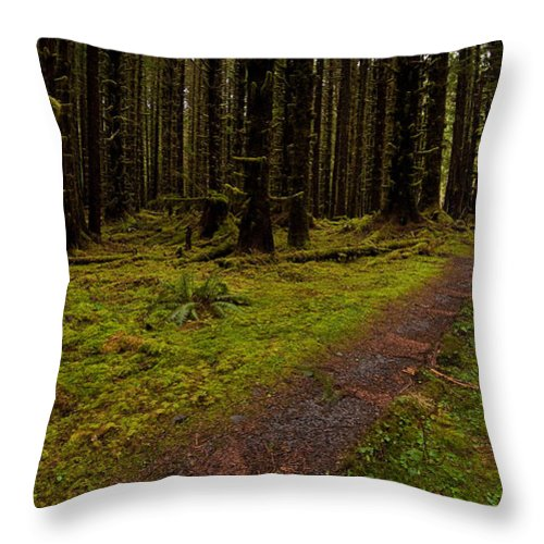 Hoh Rainforest Throw Pillow featuring the photograph Hoh Rainforest Road by Mike Reid