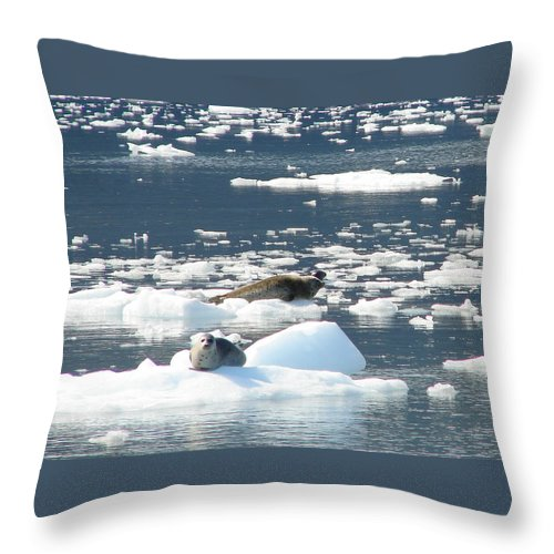 Iceberg Throw Pillow featuring the photograph Home Home On The Ice by Lew Davis