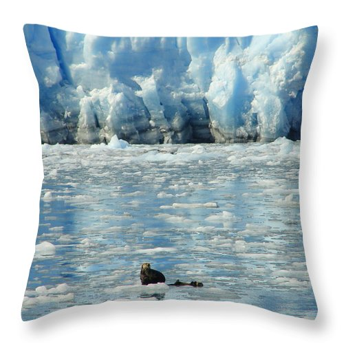 Alaska Throw Pillow featuring the photograph Home On The Cold by Lew Davis