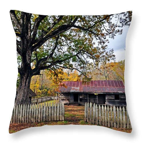 Buffalo River Throw Pillow featuring the photograph Homestead On The Buffalo by Marty Koch
