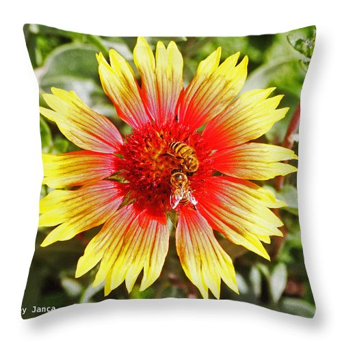 Honey Bees Throw Pillow featuring the photograph Honey Bees On Flower by Tom Janca