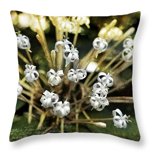Evie Throw Pillow featuring the photograph Honeysuckle White by Evie Carrier