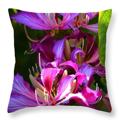 Hong Kong Orchid Throw Pillow featuring the photograph Hong Kong Orchid by Deb Halloran