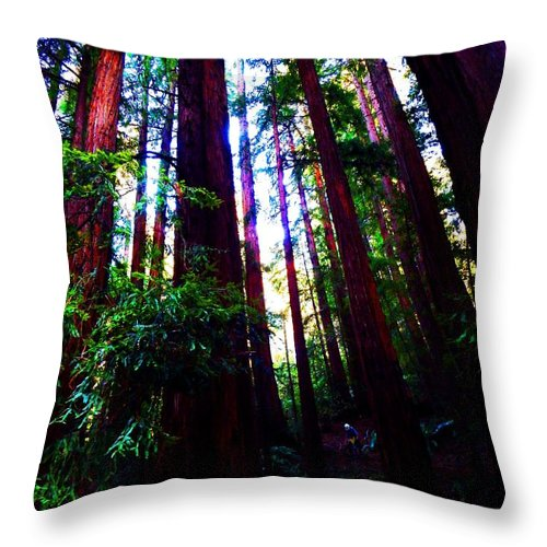 Muir Woods National Monument Throw Pillow featuring the photograph Honorable by Cathleen Cario-Reece