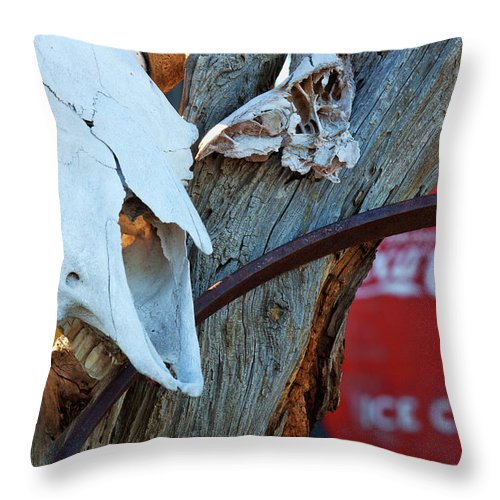 Cow Skull Photograph. Coca Cola Photograph Throw Pillow featuring the photograph Hooked On Pepsi by Jim Garrison
