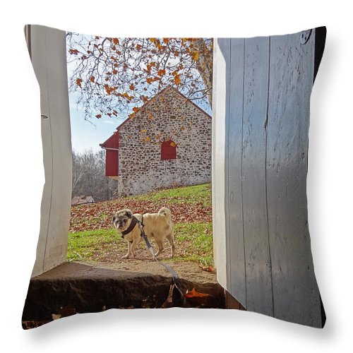 Hopewell Furnace Throw Pillow featuring the photograph Hopewell Furnace And Pug 18 by Jack Paolini