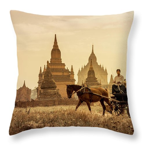 Horse Throw Pillow featuring the photograph Horse And Carriage Turning By Temples by Merten Snijders