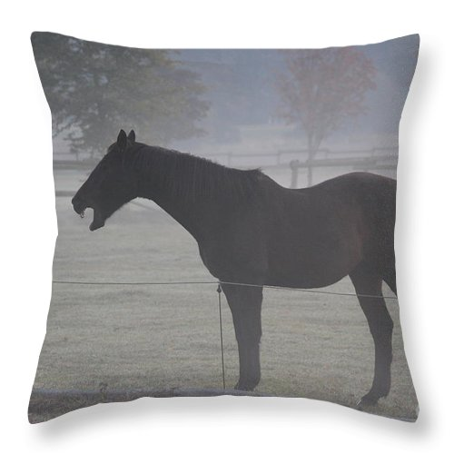 Horse Throw Pillow featuring the photograph Horse Body Language by Four Hands Art