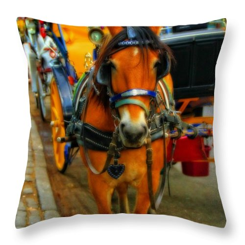 Horse Drawn Carriage In New York City Throw Pillow featuring the photograph Horse Drawn Carriage In New York City by Dan Sproul