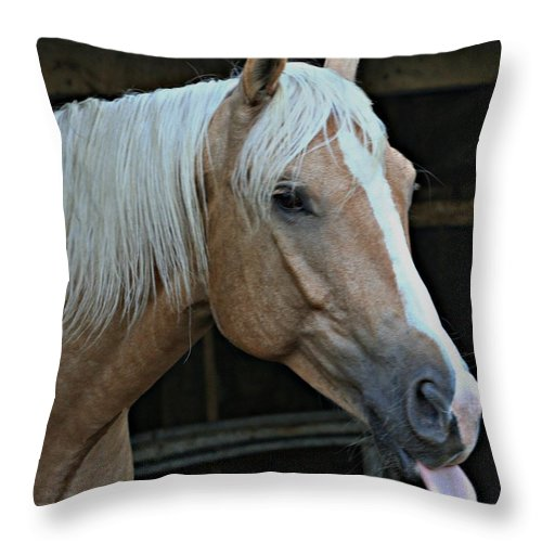Horse Throw Pillow featuring the photograph Horse Feathers by Barbara S Nickerson
