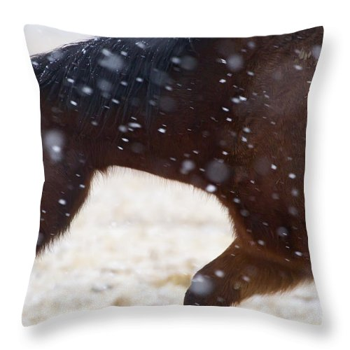 Horse Throw Pillow featuring the photograph Horse In Snow  #5425 by J L Woody Wooden