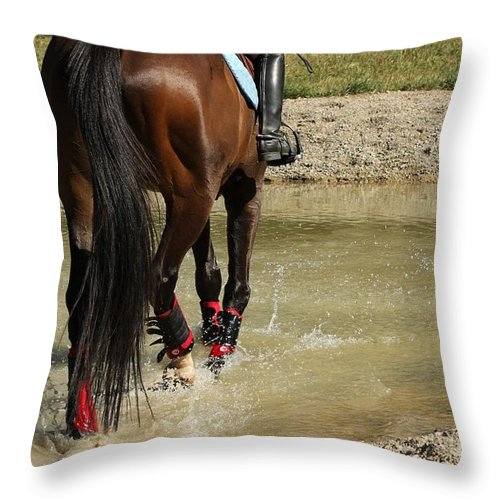 Horse Throw Pillow featuring the photograph Horse In Water by Janice Byer