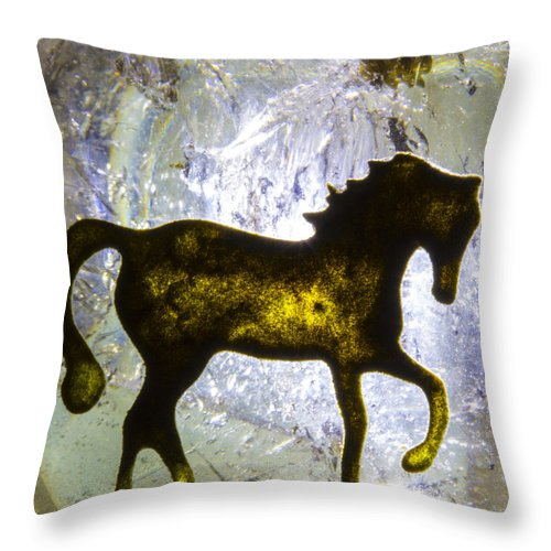 Horse Throw Pillow featuring the photograph Horse On A Quartz Crystal by Robert Storost
