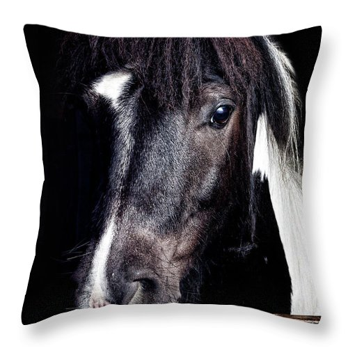 Horse Throw Pillow featuring the photograph Horse Portrait by Peter Glogiewicz