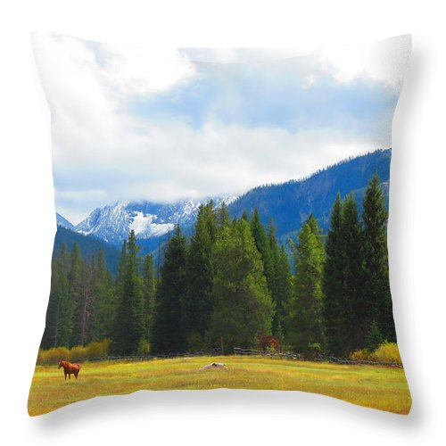 Horses Throw Pillow featuring the photograph Horse View by Connor Ehlers