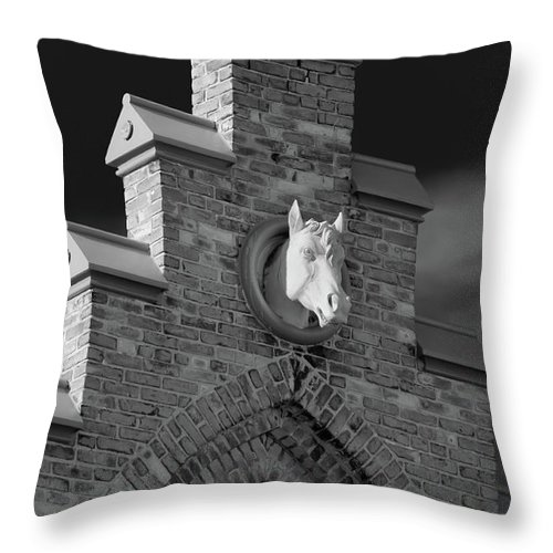 Appleton Throw Pillow featuring the photograph Horsehead  8256 by Guy Whiteley