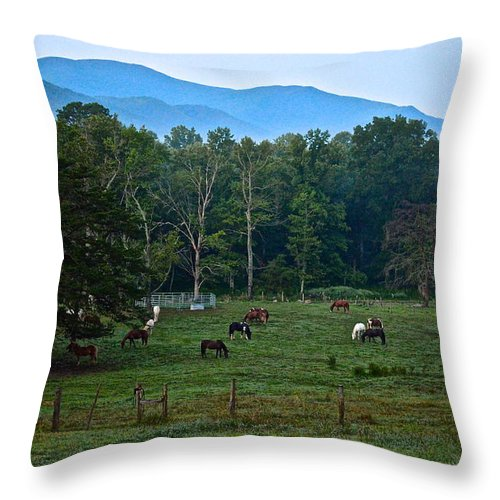 Dawn Throw Pillow featuring the photograph Horses Graze At Dawn by Frozen in Time Fine Art Photography