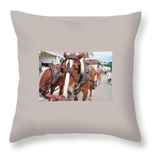 Horses Throw Pillow featuring the photograph Horses by Jo Dawkins