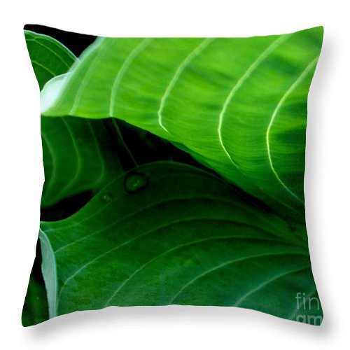 Green Throw Pillow featuring the photograph Hosta Tunnel by Valerie Fuqua