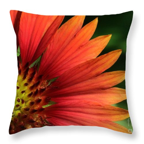 Flower Throw Pillow featuring the photograph Hot Flames by Sabrina L Ryan