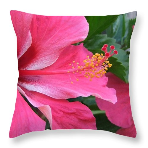 Pink Throw Pillow featuring the photograph Hot Pink Hibiscus 2 by Mary Deal