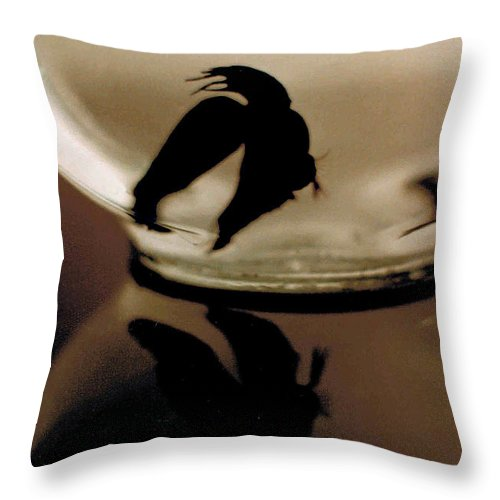 Glass Throw Pillow featuring the photograph Hour Glass by Steve Karol