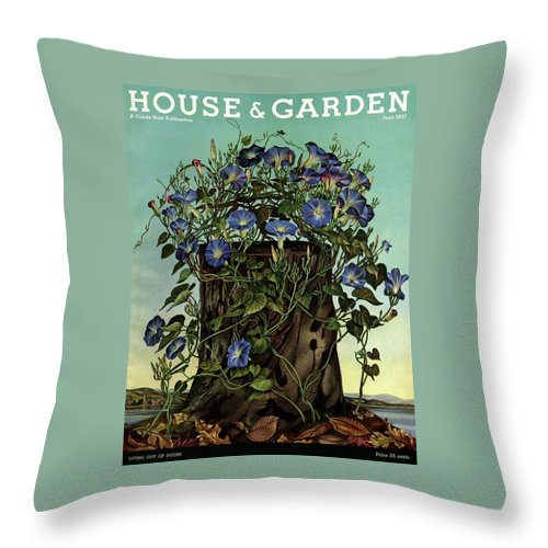 House And Garden Throw Pillow featuring the photograph House And Garden Cover Featuring Flowers Growing by Audrey Buller