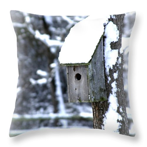Birdhouse Throw Pillow featuring the photograph House-img-2160-004 by Travis Truelove