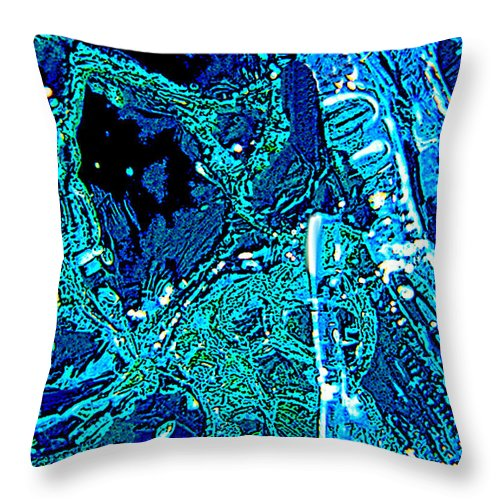 Ice Throw Pillow featuring the photograph House Of Blues by David Kehrli