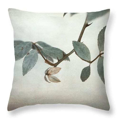 Leaves Throw Pillow featuring the photograph How Delicate This Balance by Laurie Search
