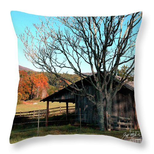 Pisgah National Forest Throw Pillow featuring the photograph Howard's Gap by Jeff McJunkin