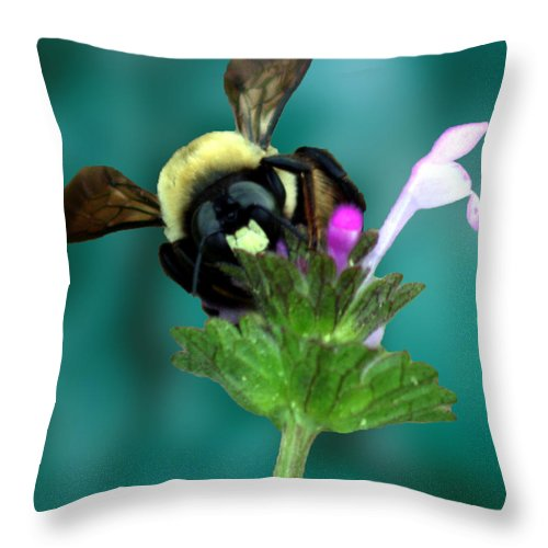 Bumble Bee Throw Pillow featuring the photograph Winging The Wildflowers by Lesa Fine