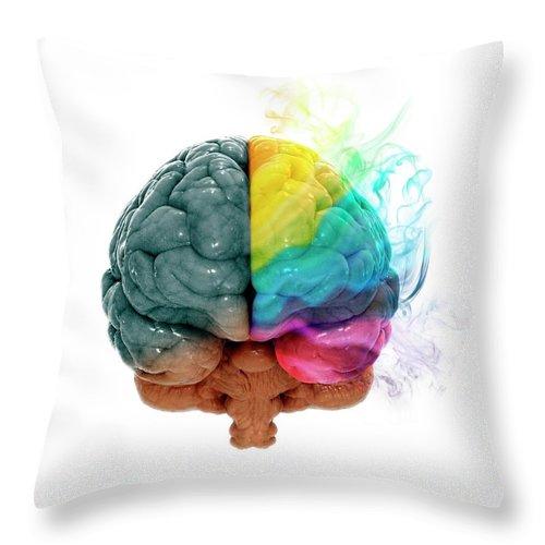 White Background Throw Pillow featuring the digital art Human Brain, Artwork by Andrzej Wojcicki