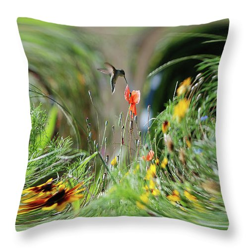 Humming Bird Throw Pillow featuring the photograph Humming Bird Digital Art by Thomas Woolworth