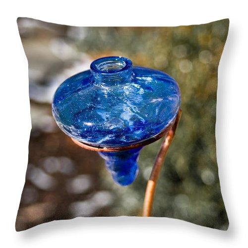 Hummingbird Throw Pillow featuring the photograph Hummingbird Drinking Crystal by Douglas Barnett