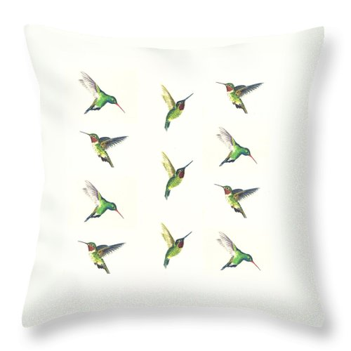 Animals Throw Pillow featuring the painting Hummingbirds Number 2 by Michael Vigliotti