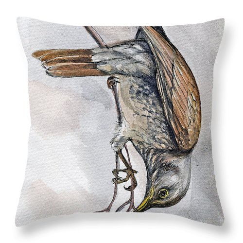 Bird Throw Pillow featuring the painting hungry Thrush 1 by Angel Ciesniarska