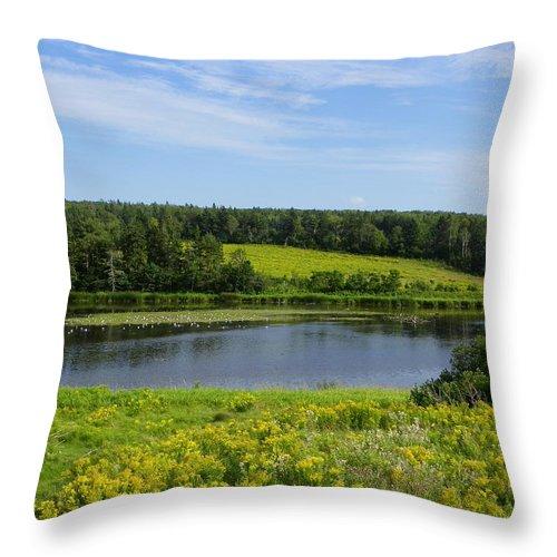 Rural Throw Pillow featuring the photograph Hunter River Beauty by Georgia Hamlin