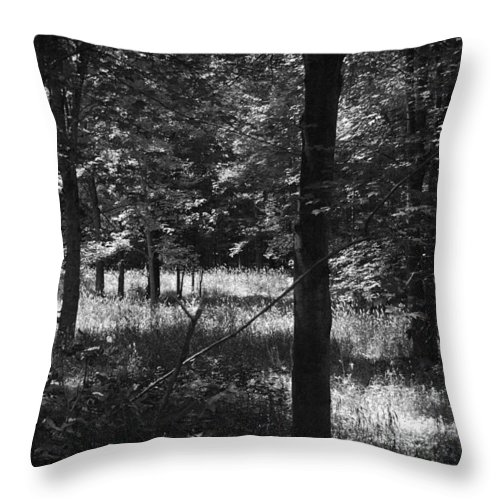 Woods Throw Pillow featuring the photograph Hunting... by Rhonda Barrett