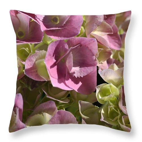 Flower Throw Pillow featuring the photograph Hydrangea by Joy Watson